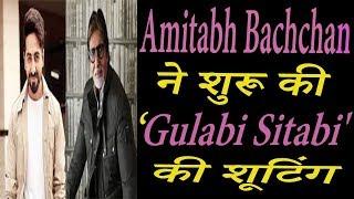 Amitabh Bachchan ने शुरू की 'Gulabi Sitabi' की शुटींग, Ayushmann Khuranna होंगे साथ