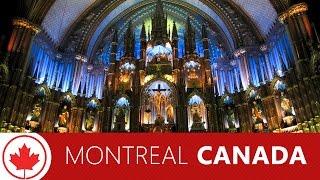 カナダ旅行でモントリオール!ノートルダム大聖堂や旧市街、おすすめの...