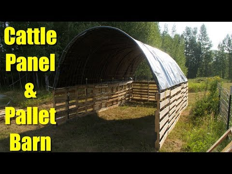 Building a Barn ( milking parlor ) from Pallets and Cattle Panels