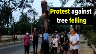 Pune: Residents stage protest against tree felling