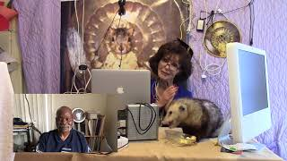 Proper Possum Problem Solver