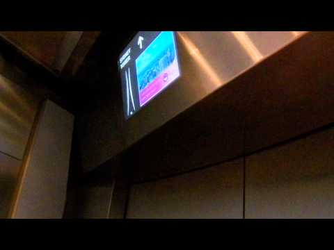 HD Base & Riding Up the Elevator to Top of Sydney Tower Sydney Australia