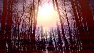 Звезда по имени Солнце (English)