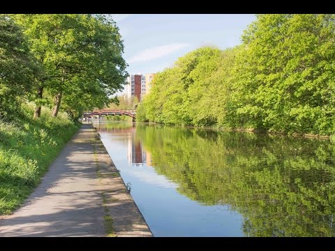 University Year 1 Highlights - Leicester & DMU
