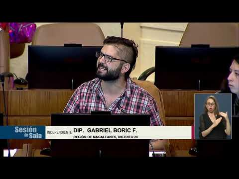 Intervención Gabriel Boric, por operación Huracán contra pueblo Mapuche