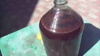 Приготовление вина из сливы