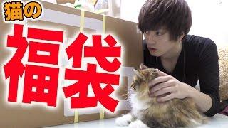 猫の福袋買ったら大好評すぎた!!! thumbnail