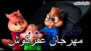 بصوت السناجب مهرجان عفركوش