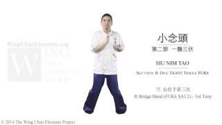 Siu Nim Tau Summary (詠春小念頭) thumbnail