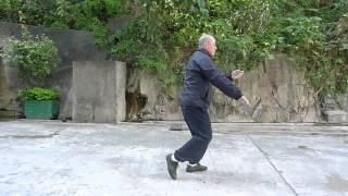 傳統楊式太極拳28式 ( Tradional Yang's Tai Chi Quan 28 Forms )