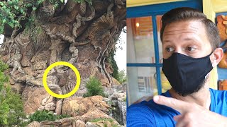 Things I've Never Noticed At Disney's Animal Kingdom Part 2! | Maharaja Jungle Trek & Hidden Mickeys