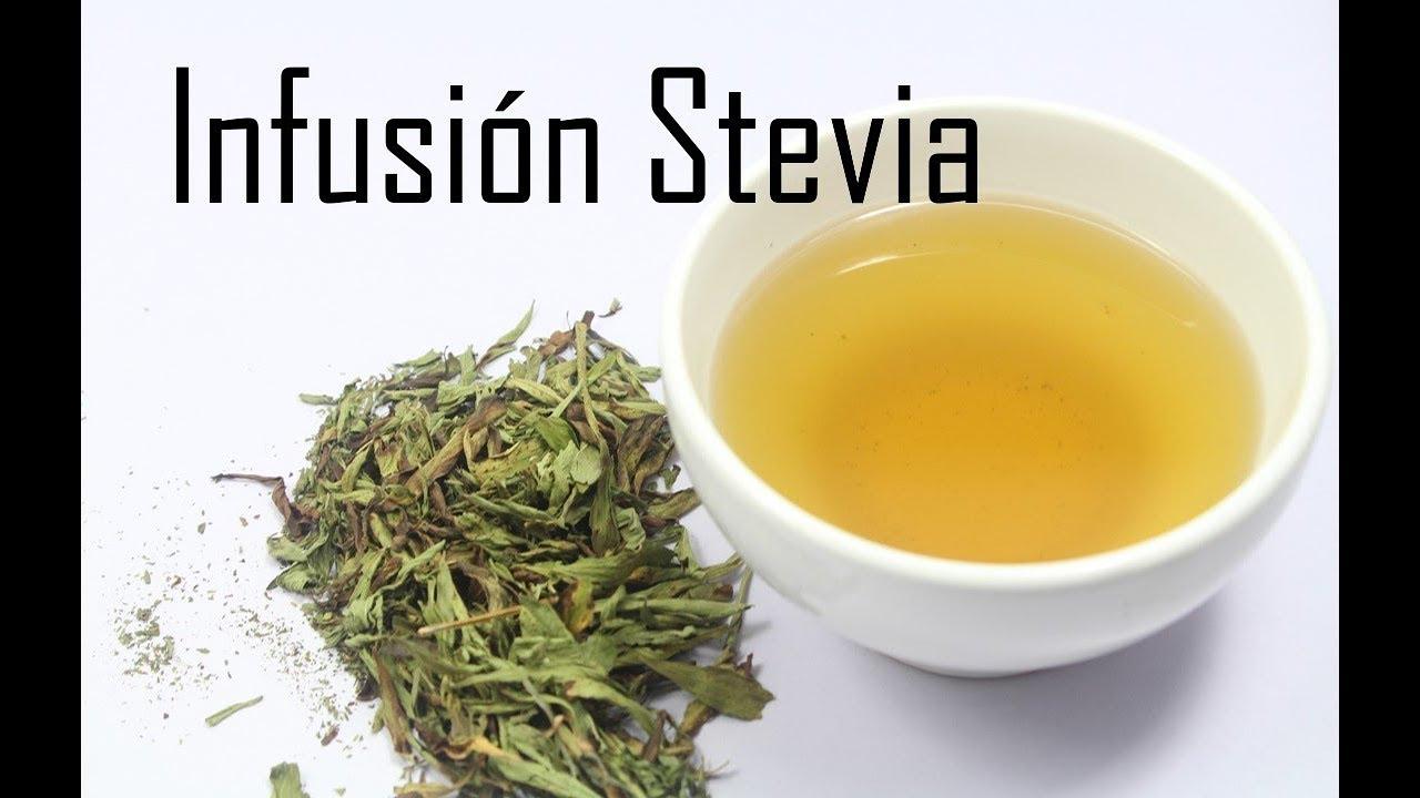 como se prepara la stevia para adelgazar