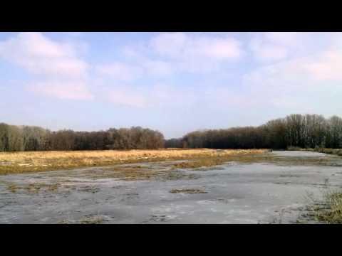 Na rieke Morave pri Levárkach  - Morava River . HD