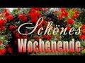 Ich wünsche dir ein schönes Wochenende...Ein Spaziergang durch Rosengarten in Bad Rothenfelde
