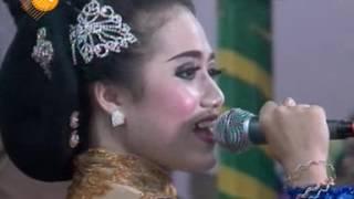 Birunya Cinta Cursari Supra nada Live In Pengkok