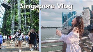 Singapore Trip 현지사는친구와 함께하는 정보…