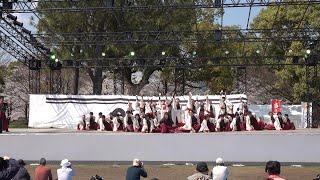 佐賀大学 嵐舞 @九州がっ祭(熊本城二の丸) 2018-03-24T11:18 嵐 動画 28