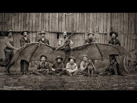 Мифы о динозаврах, в которые мы верим - Видео онлайн