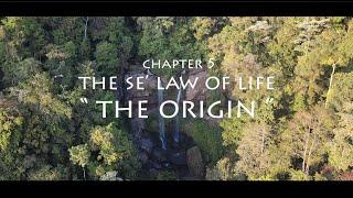 Mamos in Costa Rica - Chapter 5 - The Origin