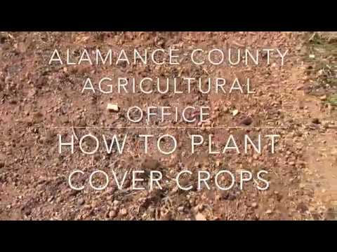 Alamance County Office of Agriculture- How to Plant Cover Crops