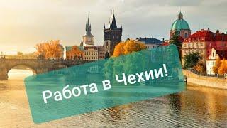 видео Контакты. Как сделать заказ мебели в Москве по телефону или почте