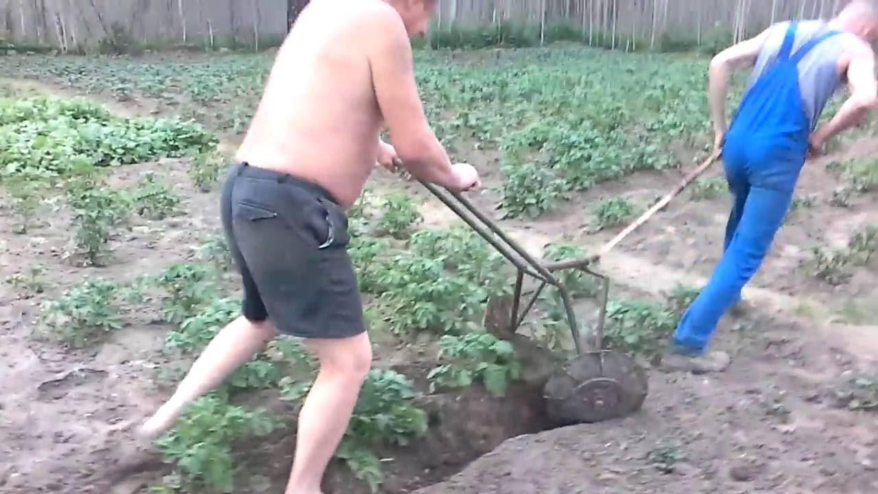 Окучиватель картофеля своими руками фото