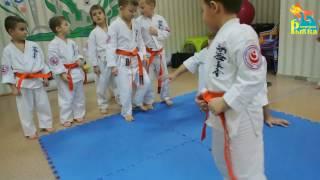 Каратэ. Тренировка детей, подготовка к соревнованиям