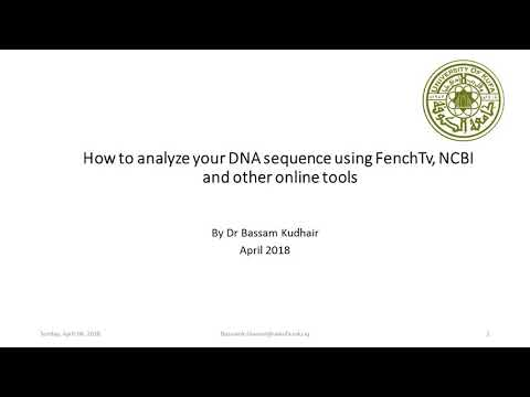 DNA Sequence Analyses By FinchTv And NCBI