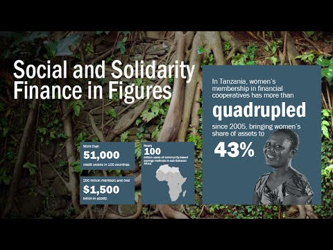 Social and Solidarity Finance: Tensions, Opportunities and Transformative Potential