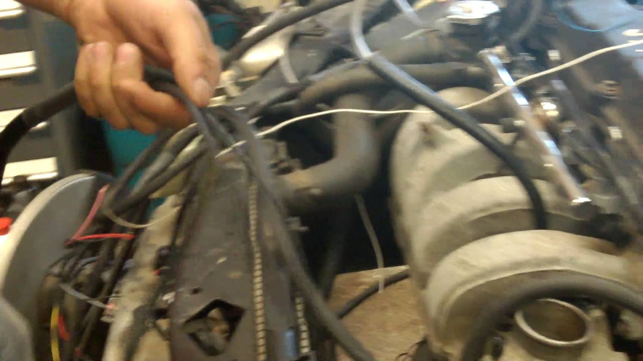 Mega and FIC plug and play Harness Dodge Neon - YouTube Dodge Neon Engine Wiring Harness on dodge rampage engine wiring harness, dodge neon engine cover, ford expedition engine wiring harness, honda element engine wiring harness, ford explorer engine wiring harness, toyota tacoma engine wiring harness, dodge neon engine mounts, mazda 6 engine wiring harness, dodge cummins engine wiring harness, jeep cherokee engine wiring harness, dodge neon engine manual, dodge neon engine manifold, dodge neon radio wiring harness, ford ranger engine wiring harness, volkswagen passat engine wiring harness, dodge neon engine sensors, jeep commander engine wiring harness, ford escape engine wiring harness, toyota 4runner engine wiring harness, buick grand national engine wiring harness,