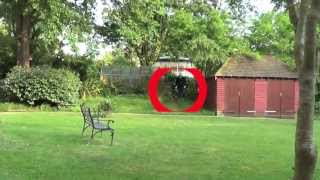 Slender Man Sighting in My Garden!