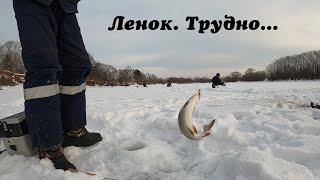 Очень трудная зимняя рыбалка 2020. Январь. Ленок. Река Малиновка. Рыбалка с подписчиками. Мормышка.