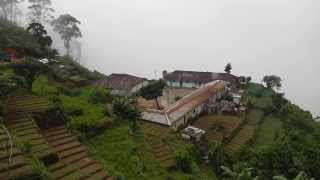 Sri Lanka,ශ්‍රී ලංකා,Ceylon,Tea Plantation Village High Altitude