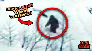 Mengupas Misteri Yeti Yang Selama Ini Menjadi Mitos Dan Sangat Sulit Ditemukan!