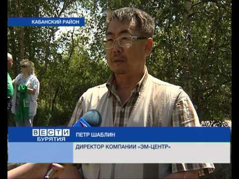 TV-канал Вести об экологической акции