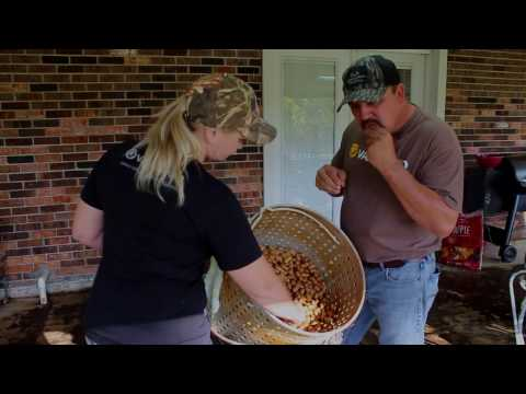Louisiana Boiled Peanuts