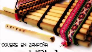 QUENAS Y ZAMPOÑAS - PAJARO CAMPANA..wmv