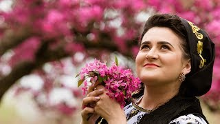 "Alexandra Bleaje Colaj melodii NOI ""Ana fata de la munte"""