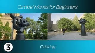 basic gimbal movements