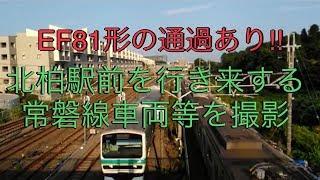 【EF81形等の通過あり】JR東日本常磐線北柏駅前を行き来する車両を撮影