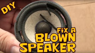 DIY BMW E46 Harman Kardon front door speaker repair