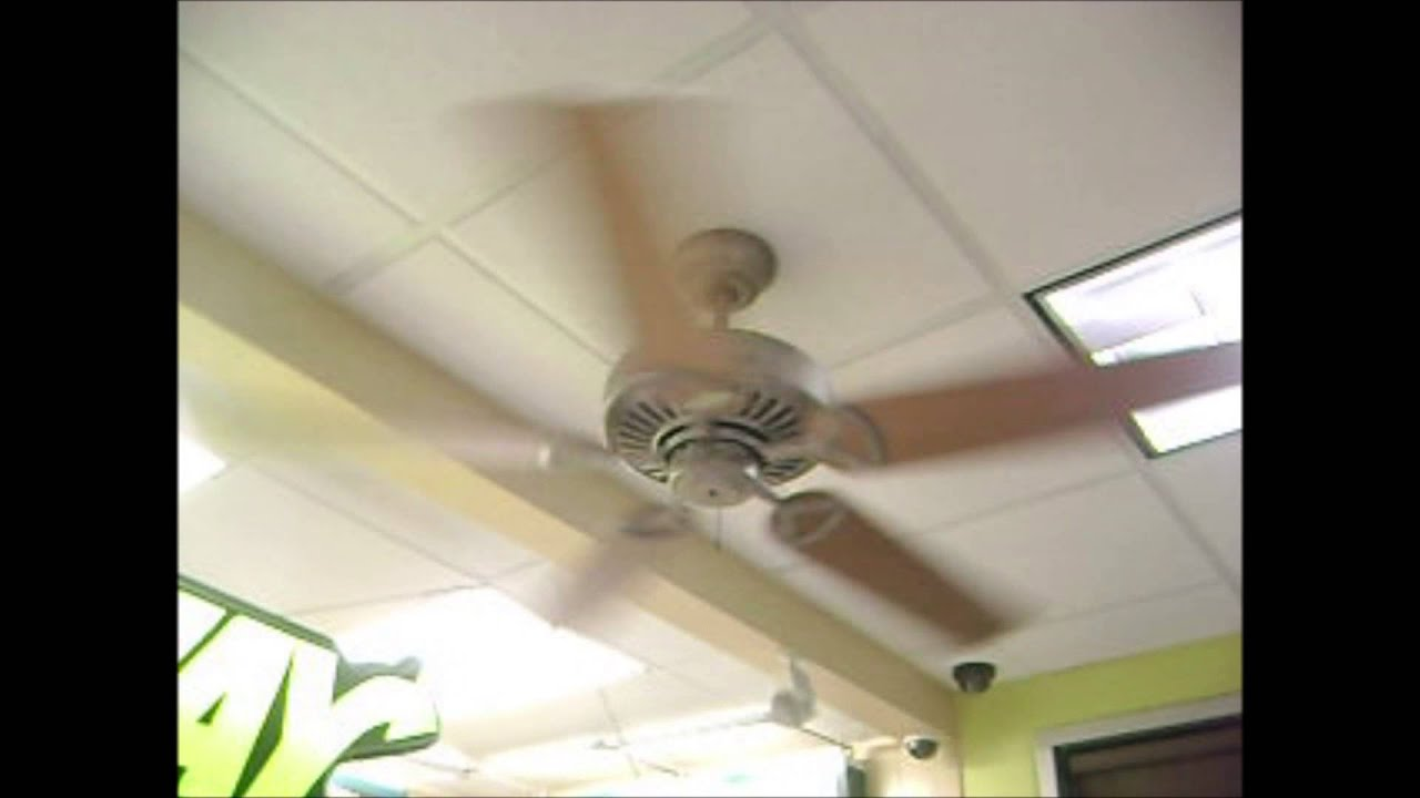 Regency MX Excel Ceiling Fans
