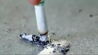 Что будет если бросить Курить
