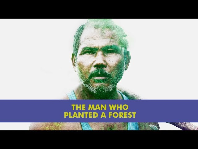 The story of jadav payeng who single handedly created 1364 acres of forest