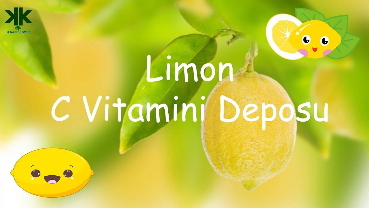 Limon C Vitamini Deposu Cocuk Belgeseli Youtube