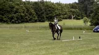 Hackthorn Level 5 Open Pony Club ODE