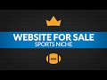 Website For Sale - $2.7K/Month in Sports Niche, Adsense and Advertising Business