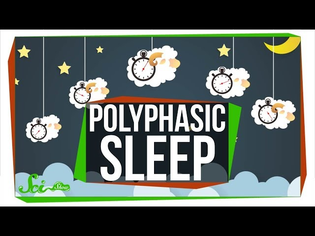What Do Scientists Really Know About Polyphasic Sleep?