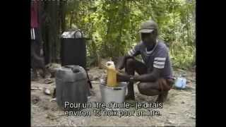 (4/4) The Coconut Revolution VOSTF / La révolution des noix de coco