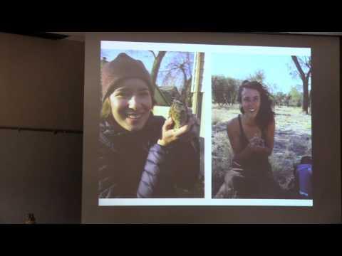 Ecology & Evolution of Avian Alarm Call Signaling